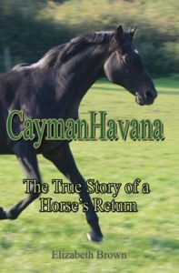 caymanhavana-cover