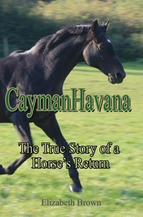 caymanhavana-cover